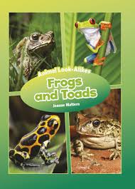 Animal Look-Alikes: Frogs and Toads