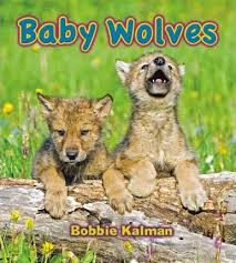 Baby Wolves - Its fun to learn about baby animals