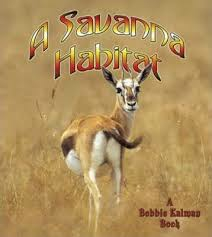 A Savanna Habitat: Introducing Habitats