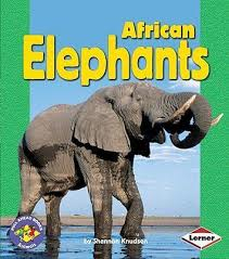 African Elephants (Pull Ahead - Animals)