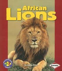 African Lions (Pull Ahead - Animals)