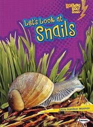 Let's Look at Snails: Animal Close-Ups (Lightning Bolt Books)