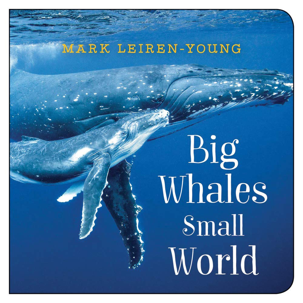 Big Whales, Small World